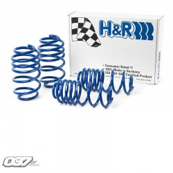 Muelles deportivos H&R Ibiza Cupra 1.4
